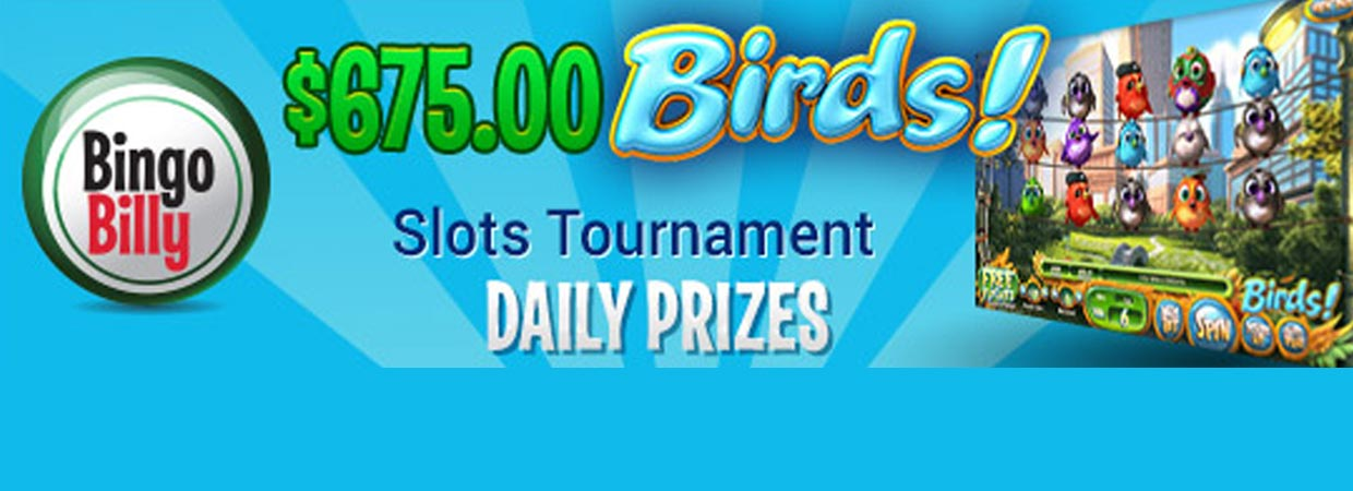Bingo Billy Invites Players to Compete in exciting Birds Slots Tournament