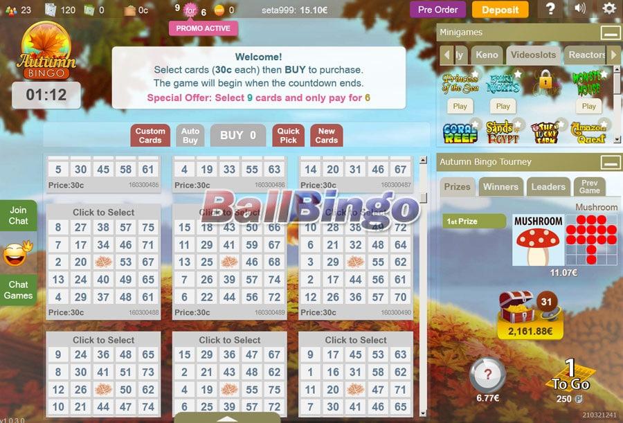 Bingo Spirit online