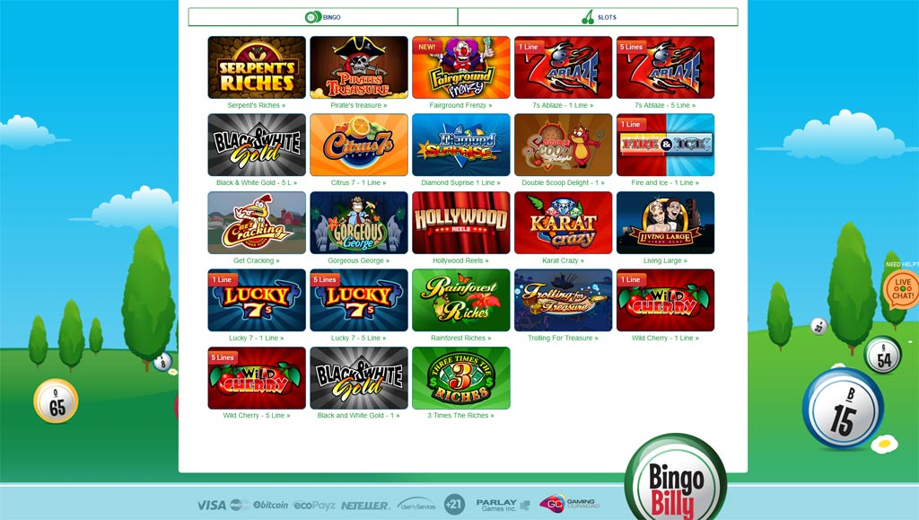bingo billy video slots