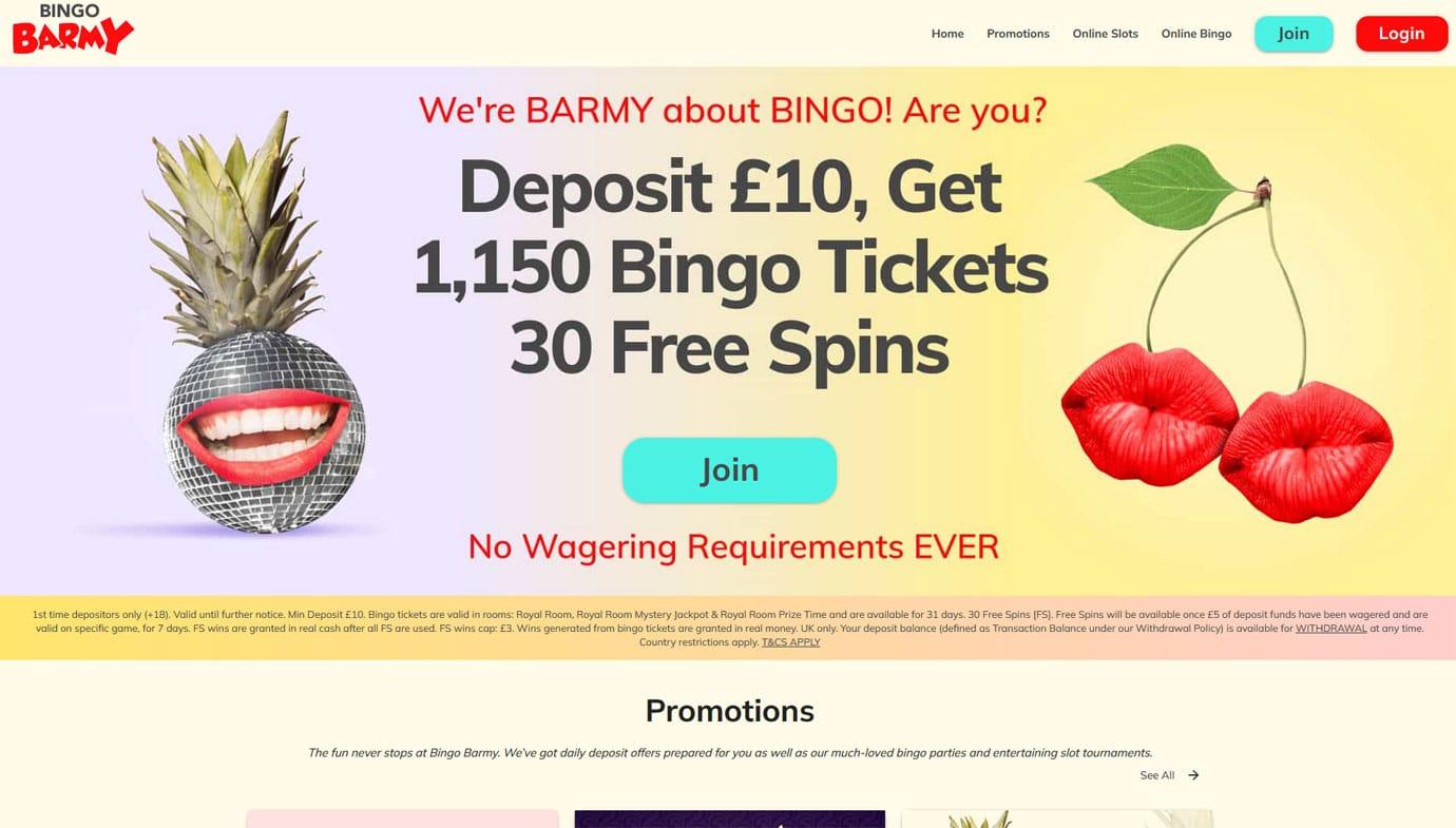 Bingo Barmy website