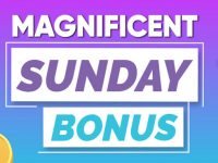 Boost your bankroll with the Magnificent Sunday Bonus at Bingo Fest